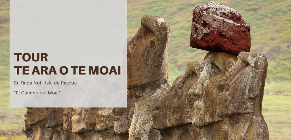 Moai Isla de Pascua